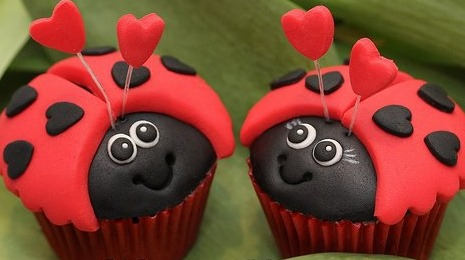 lovebugcupcakes
